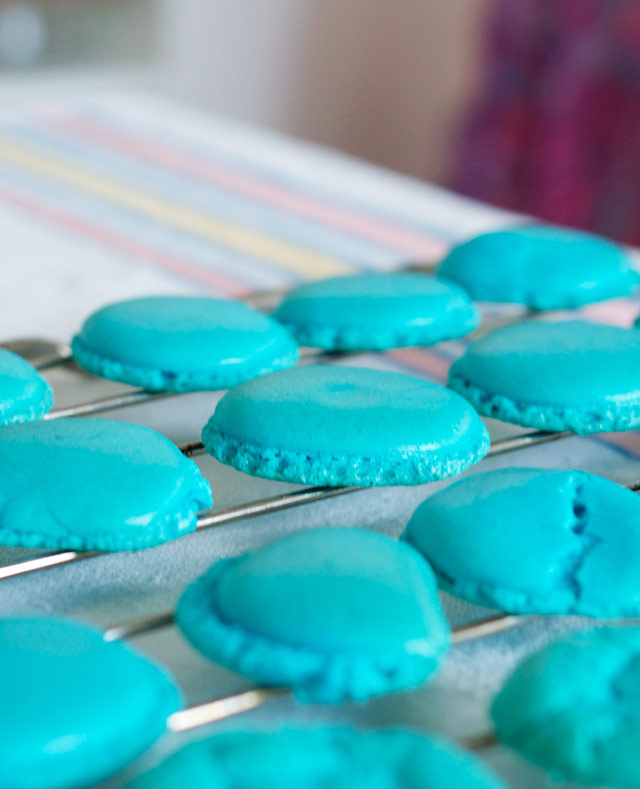 french-macaroons-8