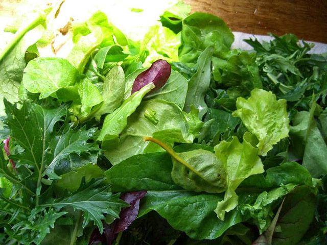 salad_greens