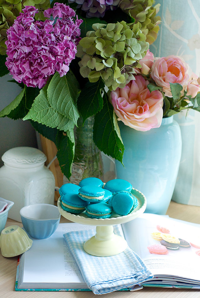 french-macaroons-11